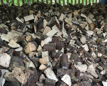 firewood and kindling